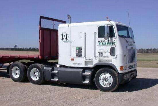 1999 Freightliner COE Truck Picture