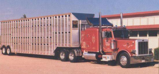 Front right 1991 Peterbilt 379 Truck Picture
