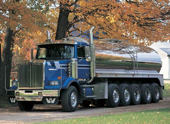 2005 Western Star 4900SA Truck Picture